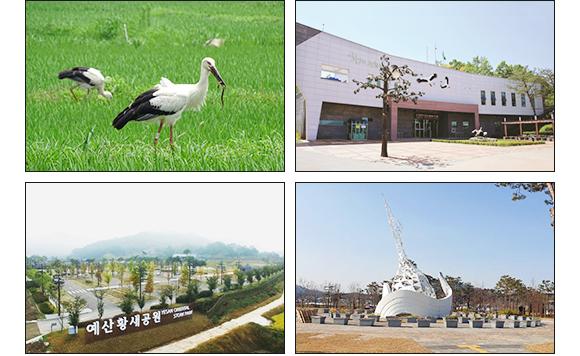 예산 황새공원